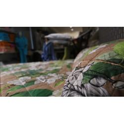trapuntino Amazzonia